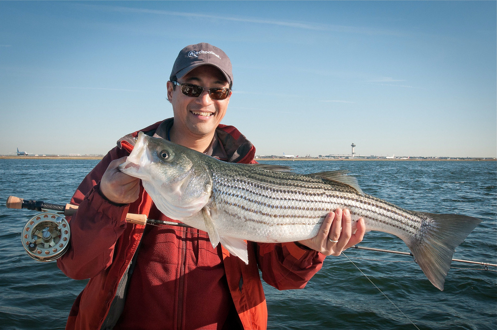 4 Best Fishing Spots in and Around Vacaville